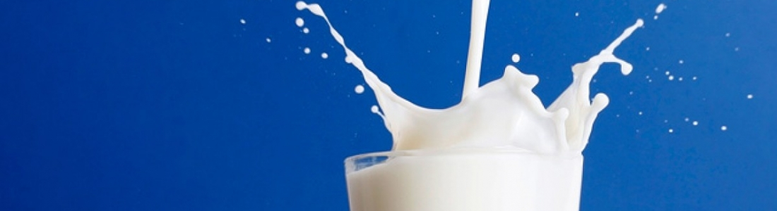 Balanced Bites – Which Milk Does Your Body Best?
